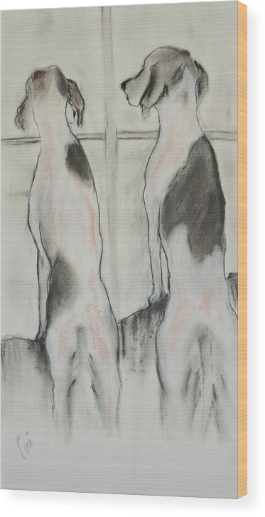 Pastel Wood Print featuring the drawing Point Of View by Cori Solomon