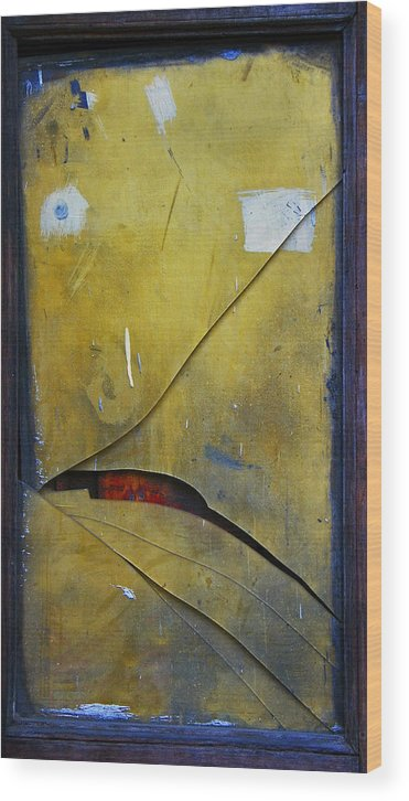 Abstract Wood Print featuring the photograph Xalapa Miro by Skip Hunt