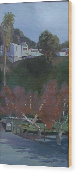 Wood Print featuring the painting House Above The Dog Park by Ann Dudrow