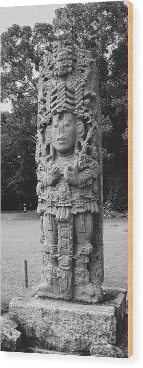 Travel Wood Print featuring the photograph Copan Ruins Artifacts I by Trude Janssen
