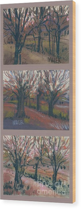 Pastel Wood Print featuring the drawing Orchard Sunset by Donald Maier