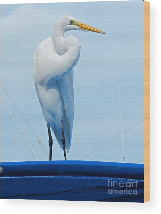 Bird Wood Print featuring the photograph White Egret by Tammy Chesney