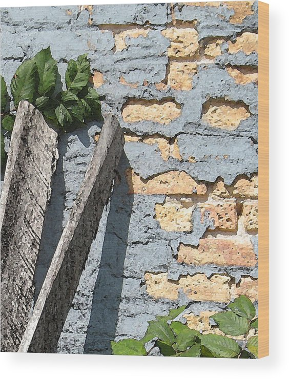 Brick Wood Print featuring the photograph Blue Brick by Gary Everson