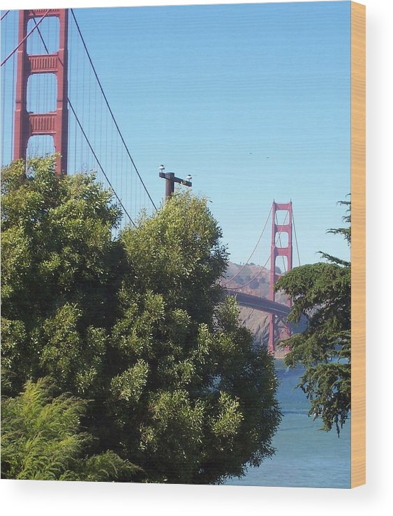 Golden Gate Bridge Wood Print featuring the photograph Golden Gate by Elizabeth Klecker