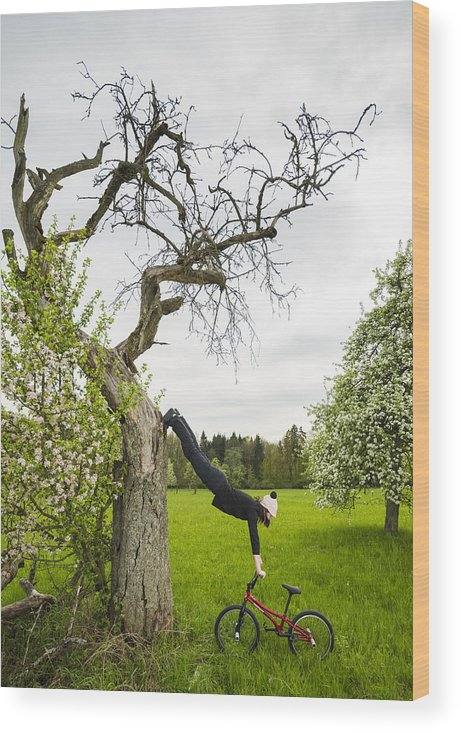 Bmx Flatland Wood Print featuring the photograph Amazing Stretching Exercise - Bmx Flatland Rider Monika Hinz Uses A Tree by Matthias Hauser