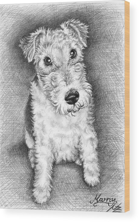 Dog Wood Print featuring the drawing Foxterrier by Nicole Zeug