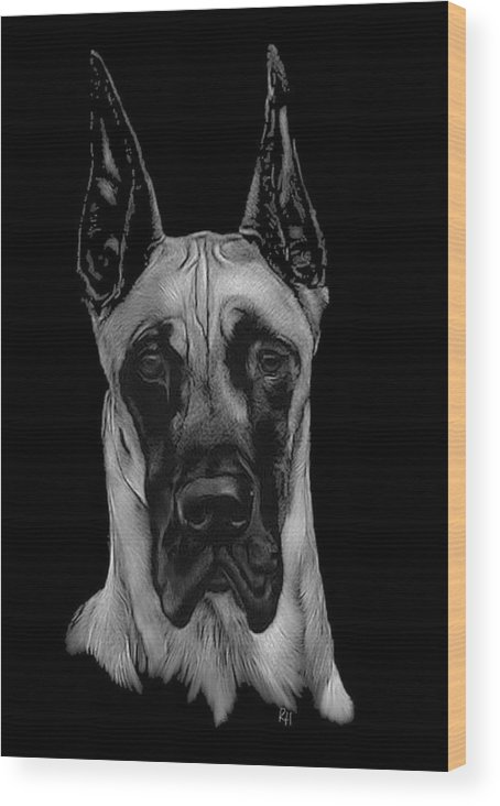 Great Dane Wood Print featuring the drawing Great Dane by Rachel Hames