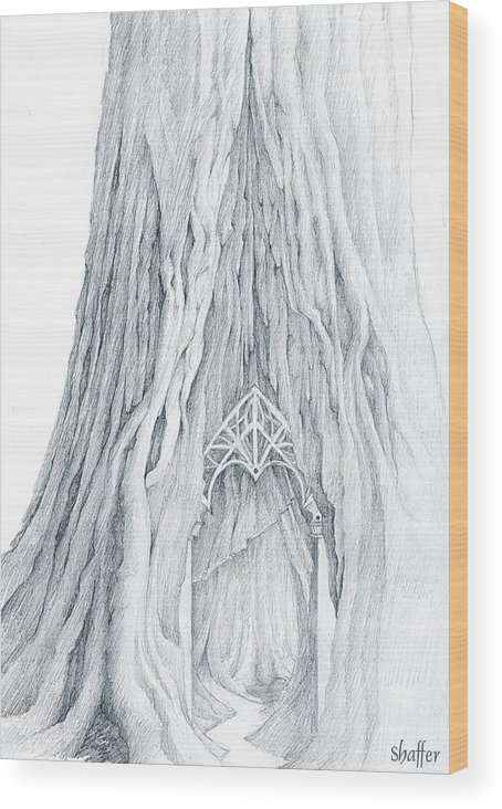 Lothlorien Wood Print featuring the drawing Lothlorien Mallorn Tree by Curtiss Shaffer