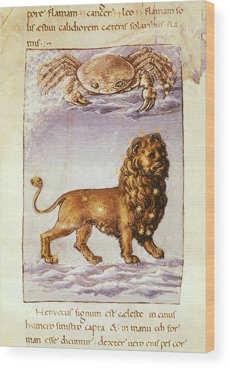 Vertical Wood Print featuring the photograph Palmieri, Matteo 1406-1475. Italian by Everett