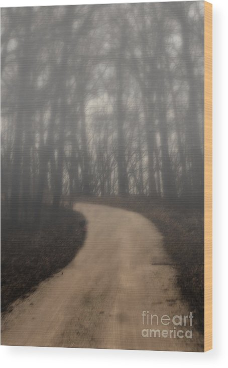 Dirt Road Wood Print featuring the photograph The Dirt Road by Carolyn Fox