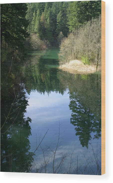 Reflection Pond Lake Water Tree Color Blue Cloud Island Wood Print featuring the photograph Reflection Pond by Steven King