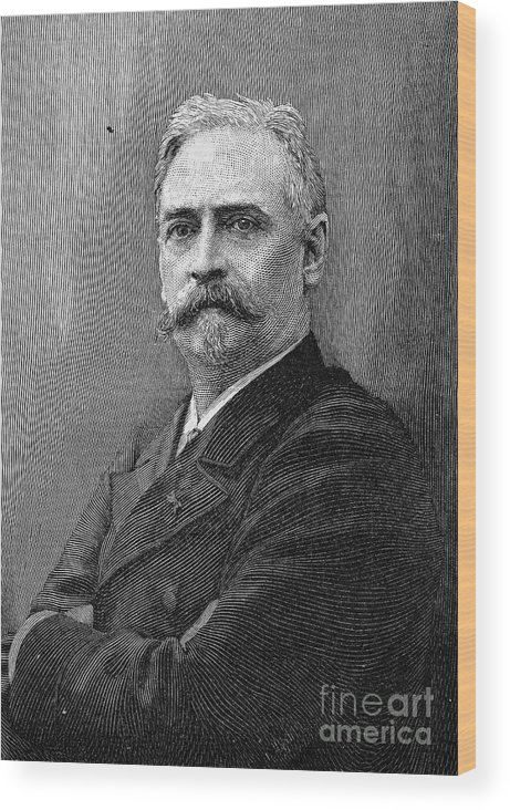 19th Century Wood Print featuring the photograph Richard Morris Hunt by Granger