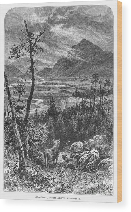1875 Wood Print featuring the photograph Scotland: Spey Valley by Granger