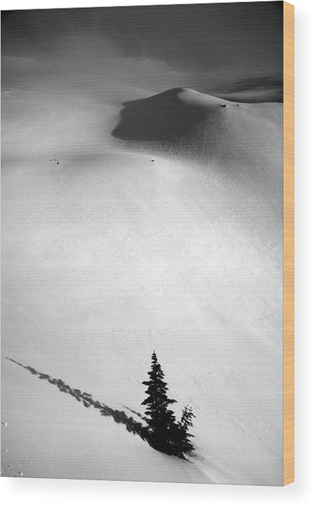 Tree Wood Print featuring the photograph Mt. Baker Tree by Alasdair Turner