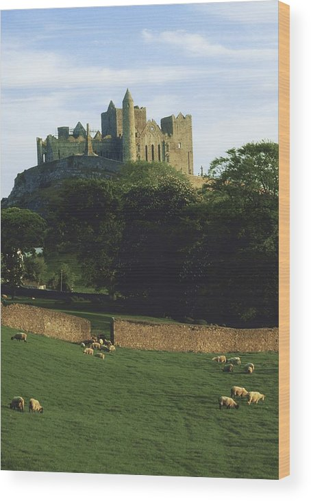 Outdoors Wood Print featuring the photograph Rock Of Cashel, Co Tipperary, Ireland by The Irish Image Collection