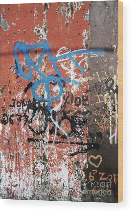 Graffitti Wood Print featuring the photograph Aging Walls by Reb Frost