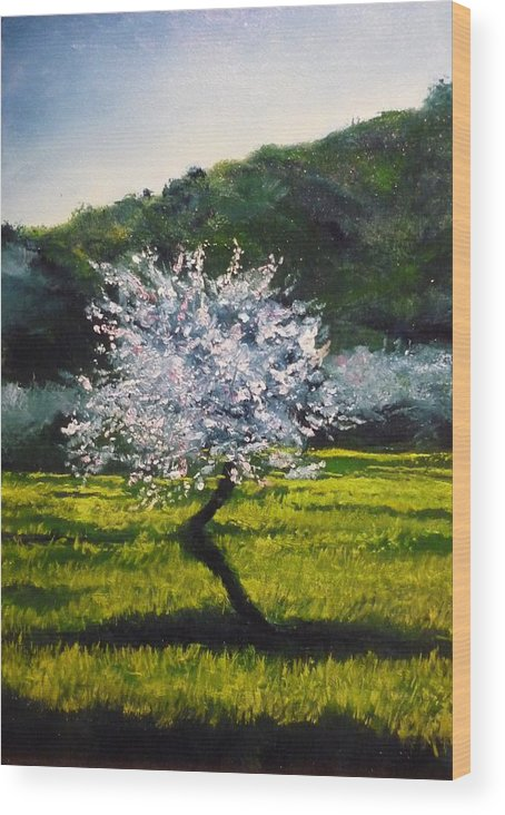 Almond Tree Wood Print featuring the painting Almond Tree In Blossom by Lizzy Forrester