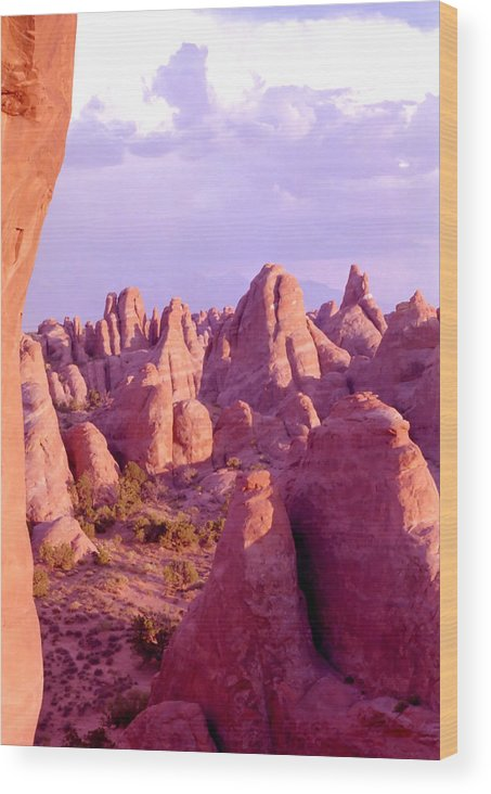 Arches National Park Wood Print featuring the photograph Arches Sentinels by Steve Ohlsen