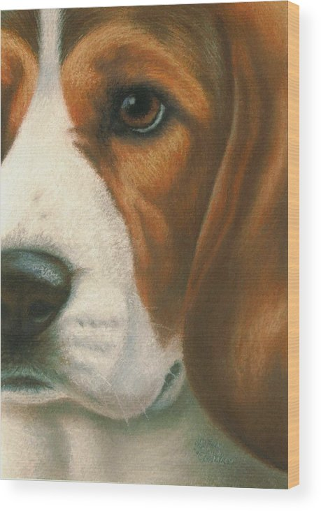 Dog Wood Print featuring the pastel Goggie Beagle by Karen Coombes
