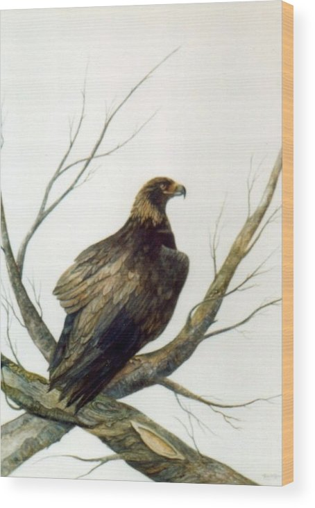 Eagle Wood Print featuring the painting Golden Eagle by Ben Kiger