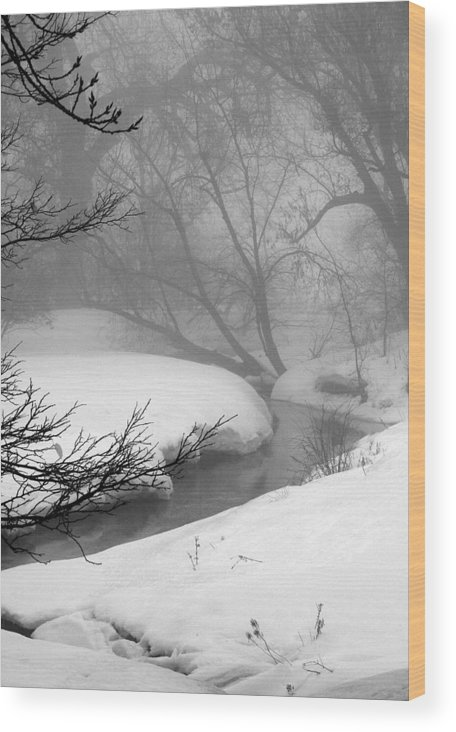 Landscape Wood Print featuring the photograph Misty Morning by Julie Lueders