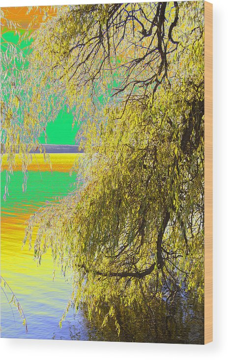 Photograph Wood Print featuring the photograph My Home Town-autunno1 by Robert Litewka