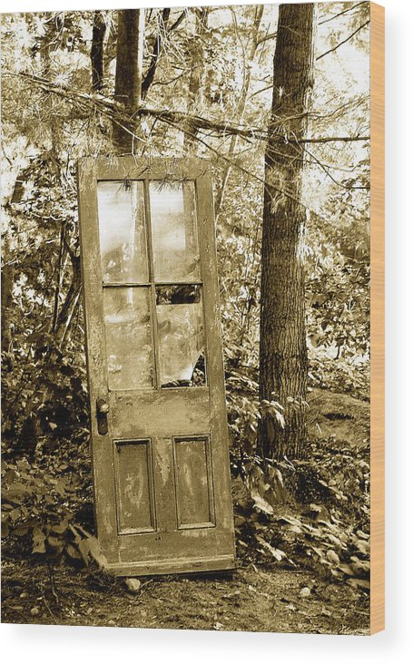 Broken Glass Wood Print featuring the photograph Old Door by Linda McRae
