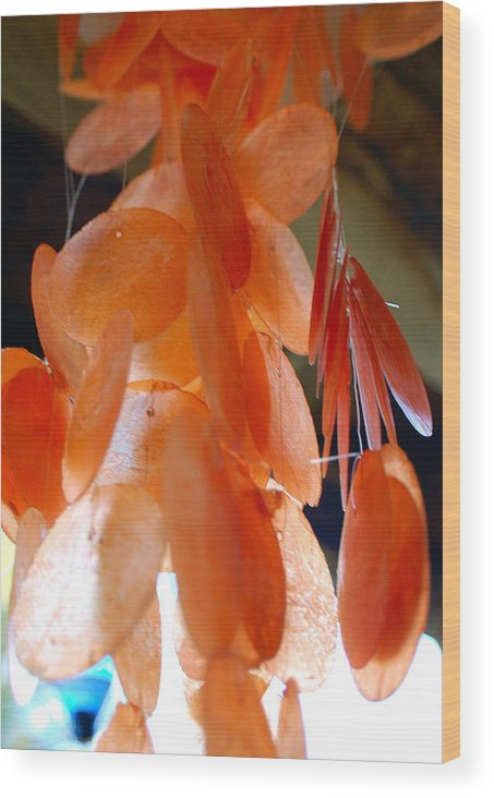 Photography Wood Print featuring the photograph Orange Chimes by Heather S Huston