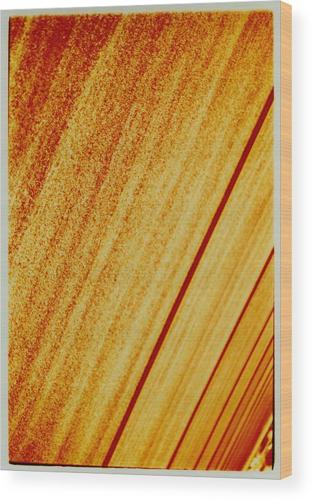 Abstract Wood Print featuring the photograph Sod by David Rivas