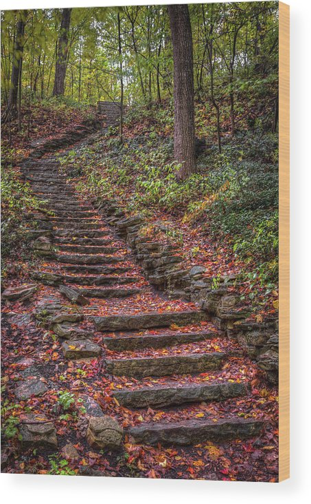 Stairs Wood Print featuring the photograph Stairs by Brad Bellisle