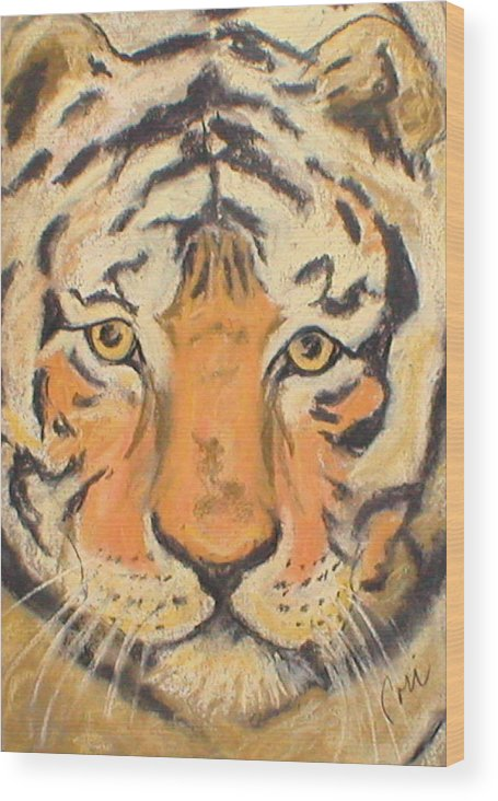 Pastel Wood Print featuring the drawing The Amber Stare by Cori Solomon