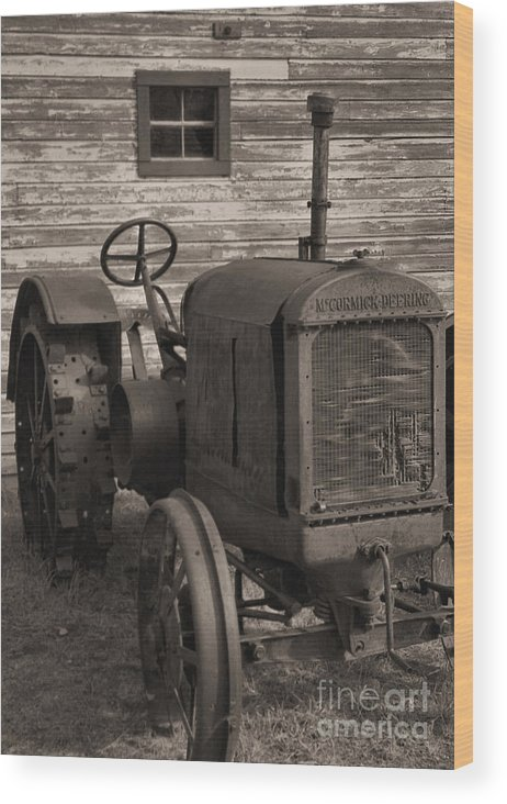 Abandoned Wood Print featuring the photograph The Old Mule by Richard Rizzo