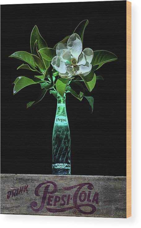 Pepsi Wood Print featuring the photograph The Pepsi And Magnolia Still Life by JC Findley