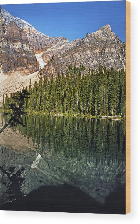 Canada Wood Print featuring the photograph Yearnings by Steve Harrington