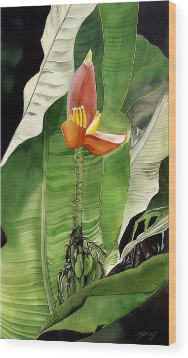 Flower Wood Print featuring the painting Banana Blossom by Alfred Ng