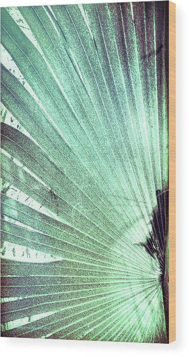 Green Wood Print featuring the photograph Palm Frond-lh by Marvin Spates