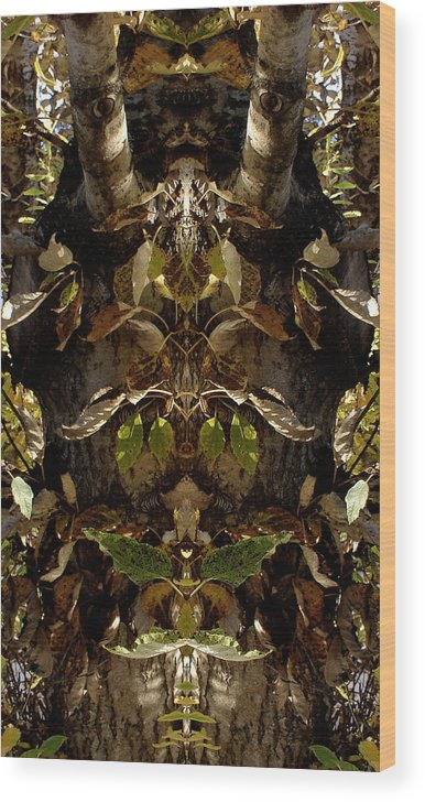 Tree Wood Print featuring the photograph Tree Spirits by Marilynne Bull