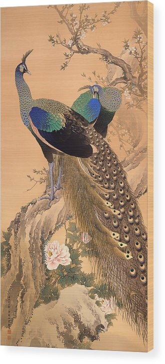 Painting Wood Print featuring the painting A Pair Of Peacocks In Spring by Mountain Dreams