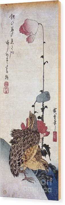 1835 Wood Print featuring the photograph Hiroshige: Poppies by Granger