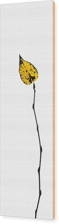 Abstract Wood Print featuring the photograph String Theory 2 - Featured 3 by Alexander Senin