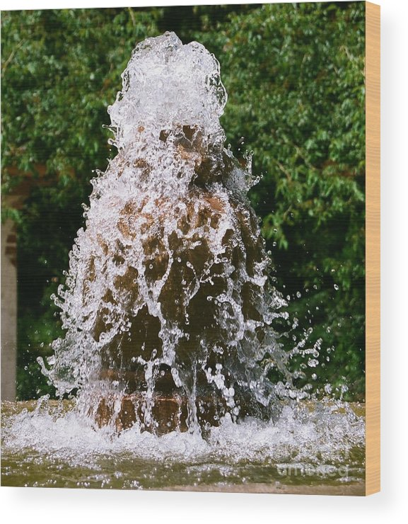 Water Wood Print featuring the photograph Water Fountain by Dean Triolo