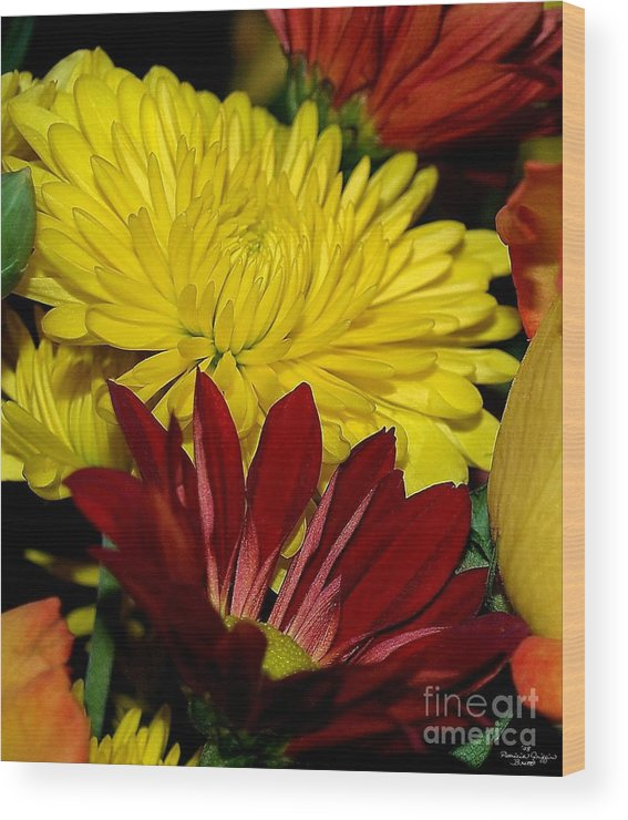 Chrysanthemum Photography Wood Print featuring the photograph Autumn Colors by Patricia Griffin Brett