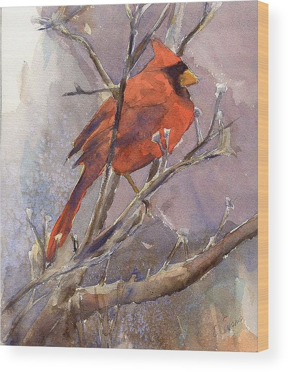 Nature Wood Print featuring the painting Cardinal - Male by Elizabeth Evans