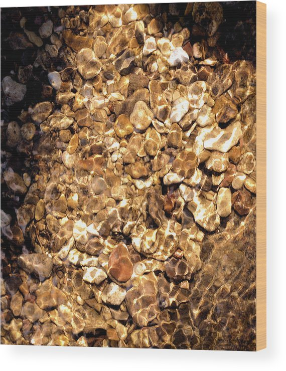 Rocks Gravel Wood Print featuring the photograph Golden Gravel by Josephine Buschman