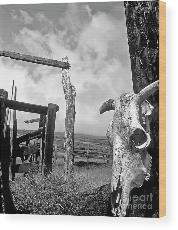 Black And White Wood Print featuring the photograph Guardian Spirit by Jim Cazel