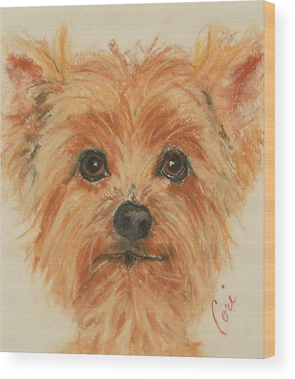 Pastel Wood Print featuring the drawing Lil Rascal by Cori Solomon