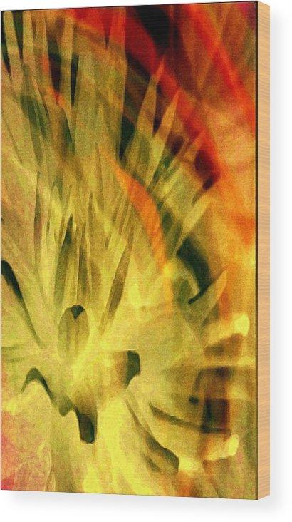 Expressionism Wood Print featuring the digital art Summer by Joseph Ferguson