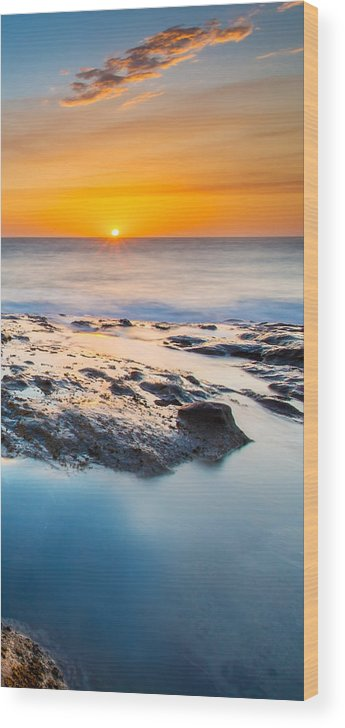 Orcas Wood Print featuring the photograph Orcas Triptych 3 by Robert Bynum