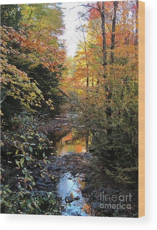 Fall Wood Print featuring the photograph Fall Brook by Linda Marcille
