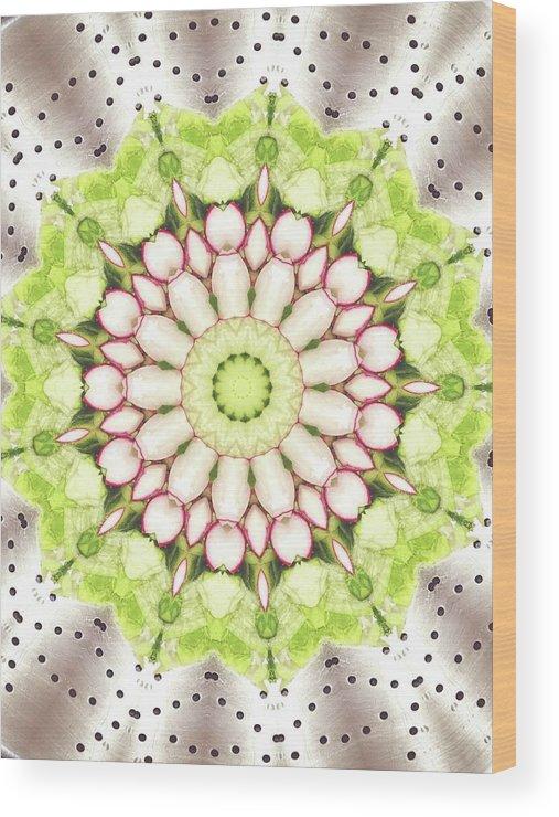 Full Frame Wood Print featuring the photograph Full Frame Shot Of Radish And Cucumber by Mark Jones / Eyeem